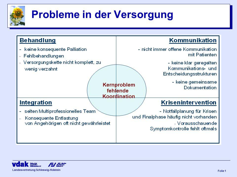 Landesvertretung Schleswig-Holstein 9. Nordische Hospiz- und Palliativtage 02.Mai.2008, Sankelmark Impulse aus Sicht des VdAK/ AEV Schleswig-Holstein: