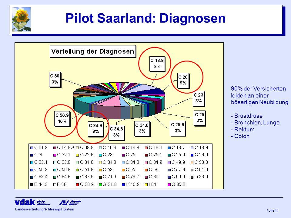 Landesvertretung Schleswig-Holstein Folie 13 Exkurs Pilot Saarland: Zuweisungen Stand Feb. 2008 Zuweisungen in die IV (2006-2008) Ärzte:112 Zuweisunge