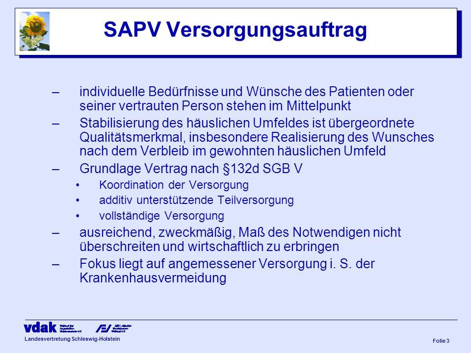 Landesvertretung Schleswig-Holstein Folie 2 Empfehlungen § 132 d,2 SGB V Personelle Anforderungen Palliativmedizinische, -pflegerische und palliativ-psychosoziale Kompetenz bei allen Teammitgliedern, evtl.