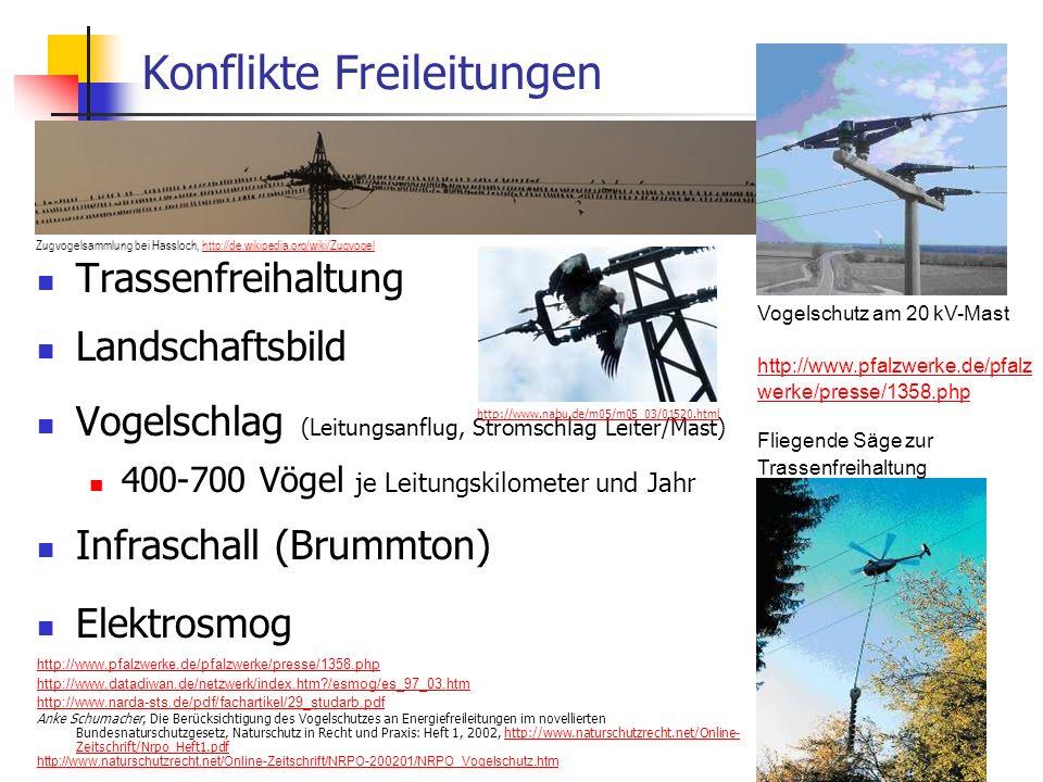 WS 06/07 Energieplanung, Verkehrsplanung, Wasserwirtschaft41 Konflikte Freileitungen Trassenfreihaltung Landschaftsbild Vogelschlag (Leitungsanflug, S