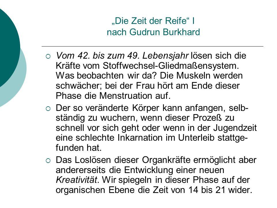 Die Zeit der Reife I nach Gudrun Burkhard Vom 42. bis zum 49. Lebensjahr lösen sich die Kräfte vom Stoffwechsel-Gliedmaßensystem. Was beobachten wir d