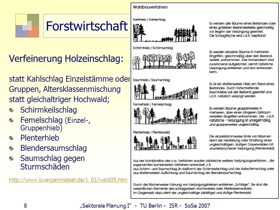 8Sektorale Planung I - TU Berlin - ISR - SoSe 2007 Forstwirtschaft Verfeinerung Holzeinschlag: statt Kahlschlag Einzelstämme oder Gruppen, Altersklass