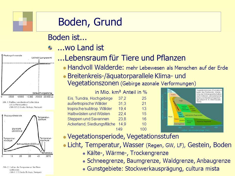 2 TU Berlin, ISR SoSe 2004 Bodennutzungsplanung II Boden, Grund Boden ist......wo Land ist...Lebensraum für Tiere und Pflanzen Handvoll Walderde: mehr