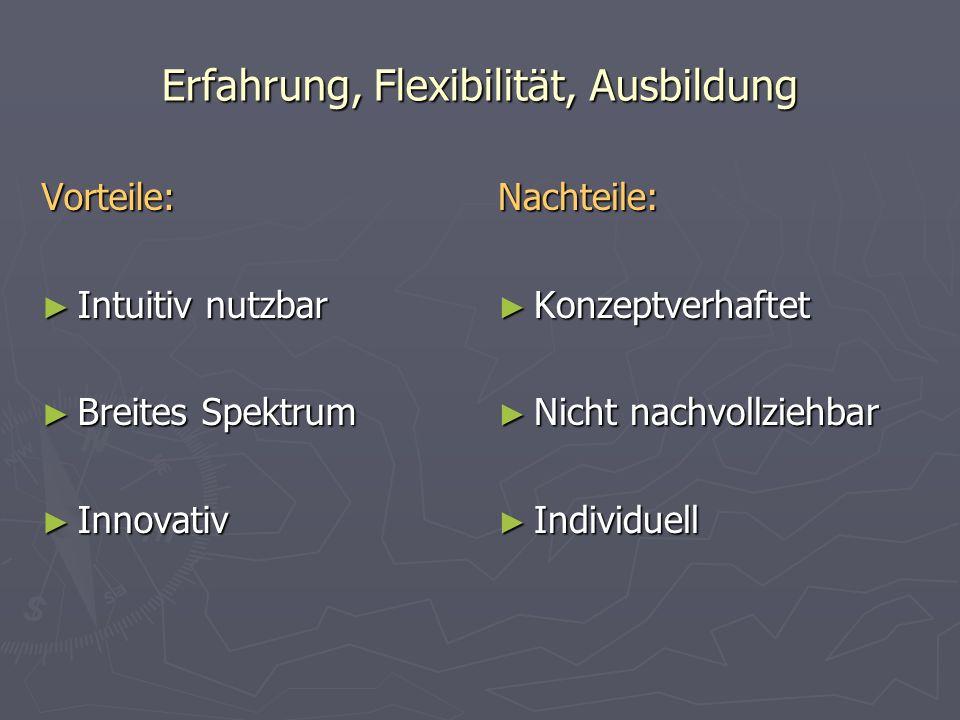 Erfahrung, Flexibilität, Ausbildung Vorteile: Intuitiv nutzbar Intuitiv nutzbar Breites Spektrum Breites Spektrum Innovativ Innovativ Nachteile: Konzeptverhaftet Nicht nachvollziehbar Individuell