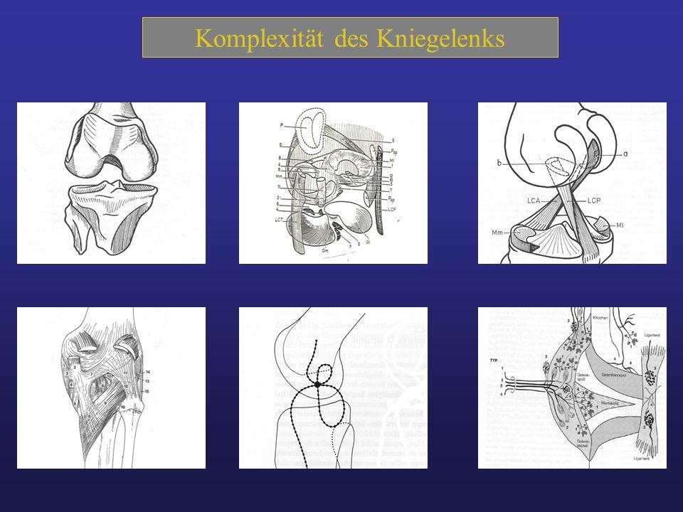Ursache-Folge- Ketten Überbelastung Verletzung Degeneration Neurologie Rheuma Psyche Typologie