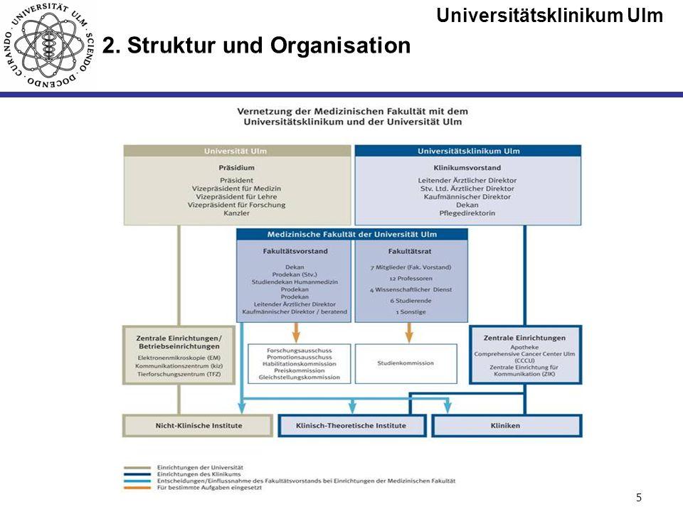 Universitätsklinikum Ulm Seite #5 2. Struktur und Organisation