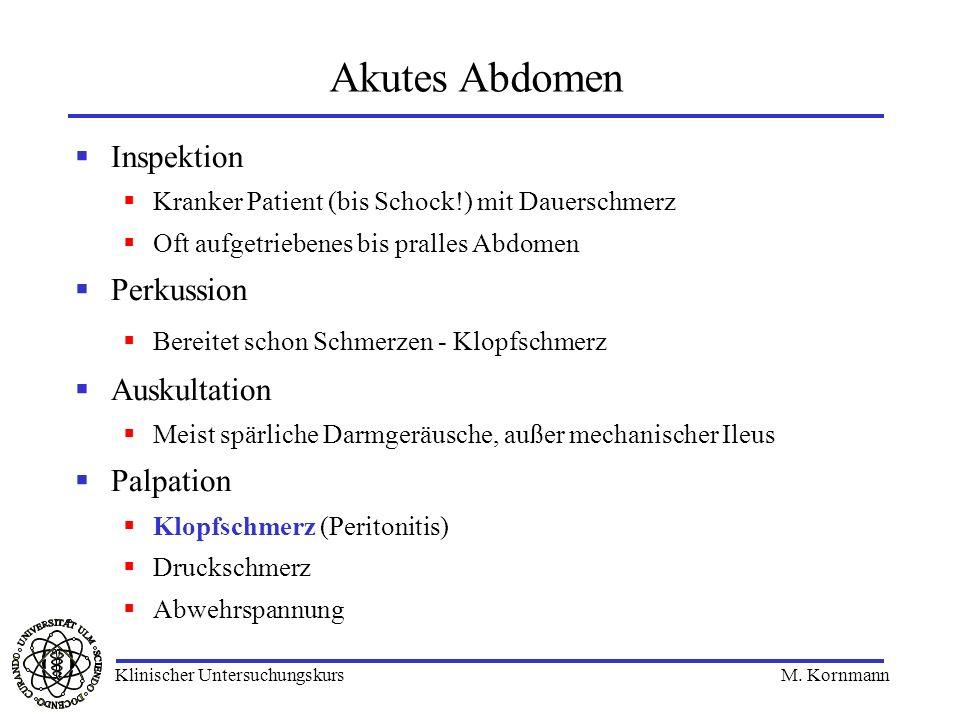 Inspektion Kranker Patient (bis Schock!) mit Dauerschmerz Oft aufgetriebenes bis pralles Abdomen Perkussion Bereitet schon Schmerzen - Klopfschmerz Au