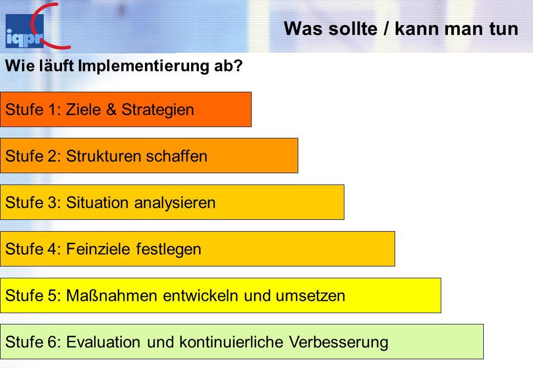 Was sollte / kann man tun Wie läuft Implementierung ab? Stufe 1: Ziele & Strategien Stufe 2: Strukturen schaffen Stufe 3: Situation analysieren Stufe