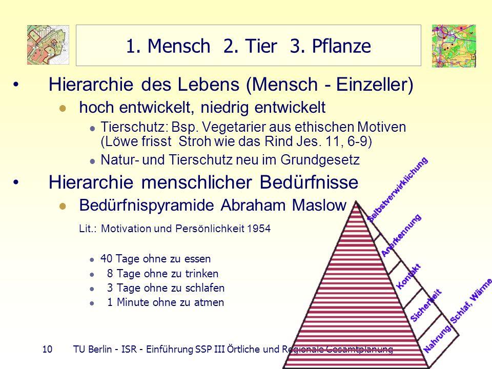 10 TU Berlin - ISR - Einführung SSP III Örtliche und Regionale Gesamtplanung 1. Mensch 2. Tier 3. Pflanze Hierarchie des Lebens (Mensch - Einzeller) h