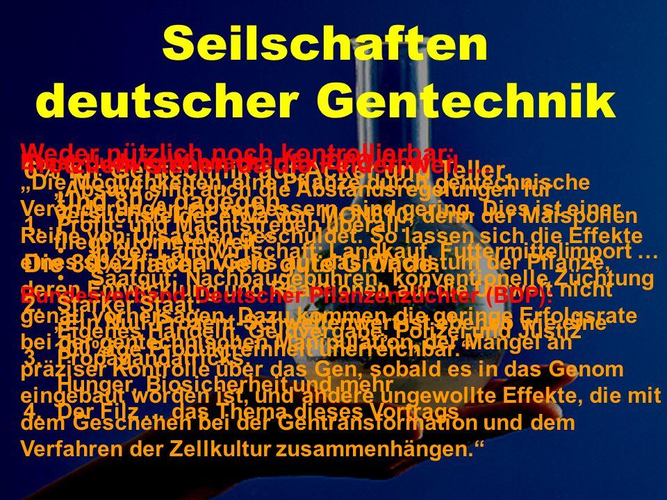 Gießener Anzeiger vom 1.6.2006: Dabei legte Kogel...