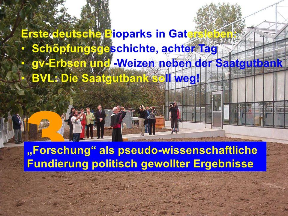 Erste deutsche Bioparks in Gatersleben: Schöpfungsgeschichte, achter Tag gv-Erbsen und -Weizen neben der Saatgutbank BVL: Die Saatgutbank soll weg.
