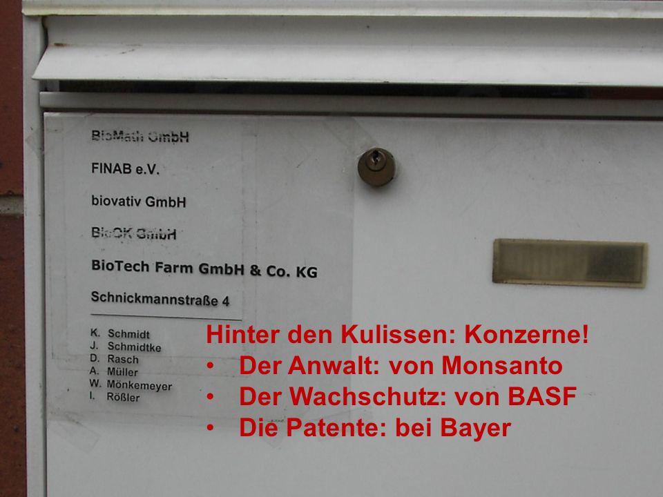 Forscht an Uni Rostock Vorsitzende im Lobbyverein FINAB: Kampagne für ein AgroBioTechnikum (Kasse: Kerstin Schmidt) biovativ als Tochterfirma (Geschäf