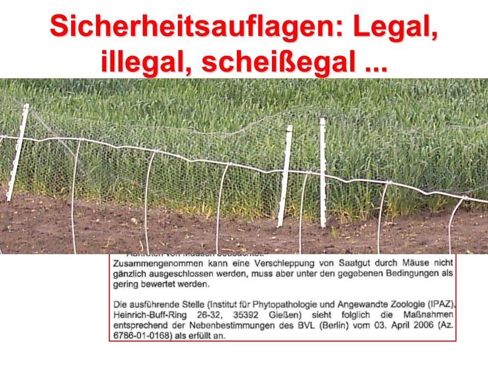 Propaganda im Gießener Anzeiger vom 1.6.2006: