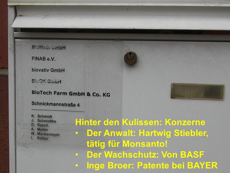 Ein Geflecht von Firmen und Behörden: BioOK.