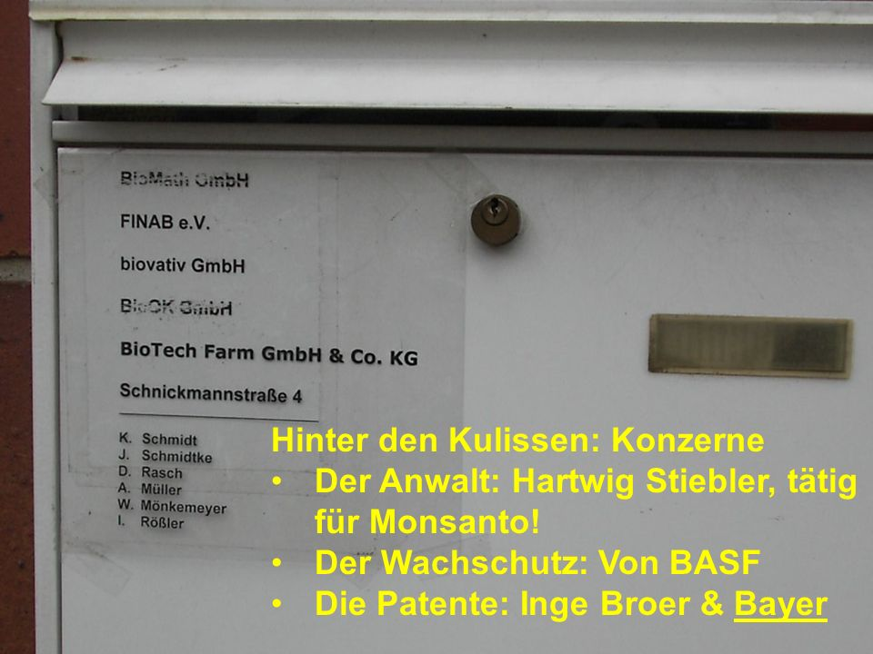 Gentechniker gegen Gentechnik Monsanto: Gentechnik unkontrollierbar.