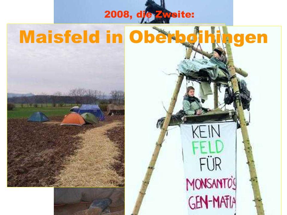 Gießener Gerstenfeld besetzt 2008, die Erste: