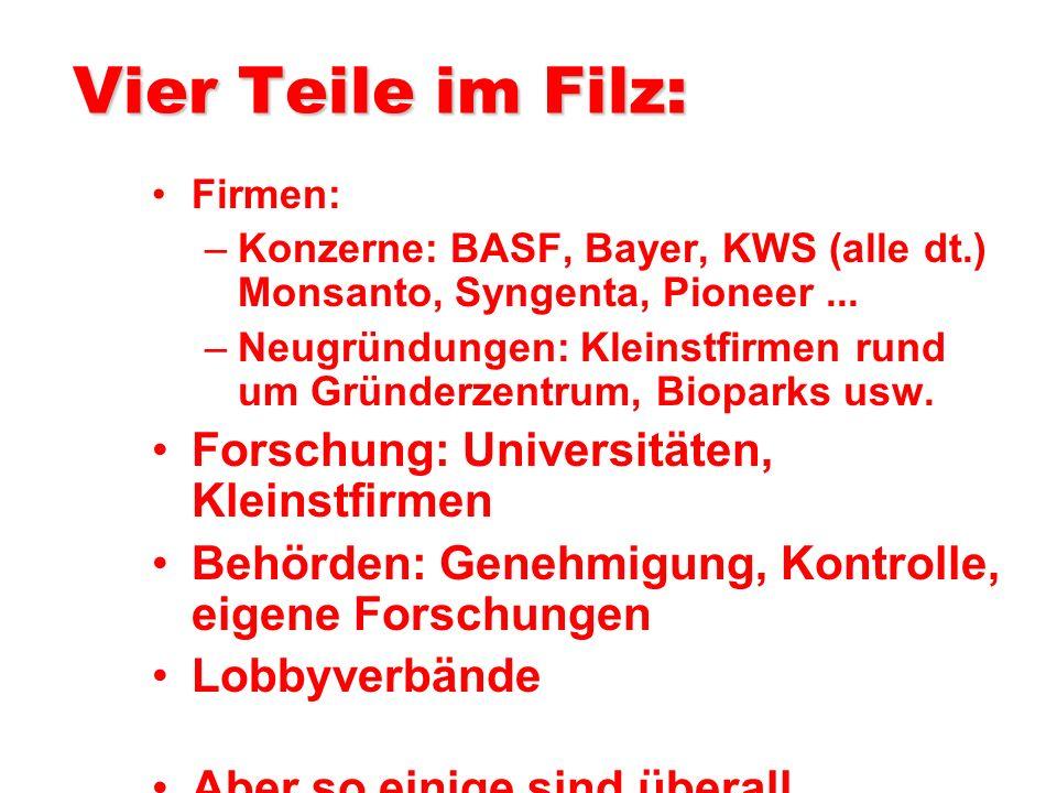 Vier Teile im Filz: Firmen: –Konzerne: BASF, Bayer, KWS (alle dt.) Monsanto, Syngenta, Pioneer...