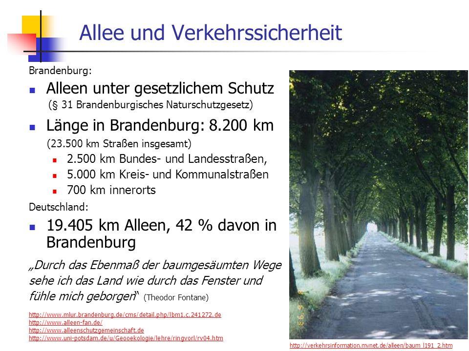 24.01.2014 WS 06/07 Energieplanung, Verkehrsplanung, Wasserwirtschaft 70 Allee und Verkehrssicherheit Brandenburg: Alleen unter gesetzlichem Schutz (§ 31 Brandenburgisches Naturschutzgesetz) Länge in Brandenburg: 8.200 km (23.500 km Straßen insgesamt) 2.500 km Bundes- und Landesstraßen, 5.000 km Kreis- und Kommunalstraßen 700 km innerorts Deutschland: 19.405 km Alleen, 42 % davon in Brandenburg Durch das Ebenmaß der baumgesäumten Wege sehe ich das Land wie durch das Fenster und fühle mich geborgen (Theodor Fontane) http://www.mlur.brandenburg.de/cms/detail.php/lbm1.c.241272.de http://www.alleen-fan.de/ http://www.alleenschutzgemeinschaft.de http://www.uni-potsdam.de/u/Geooekologie/lehre/ringvorl/rv04.htm http://verkehrsinformation.mvnet.de/alleen/baum_l191_2.htm