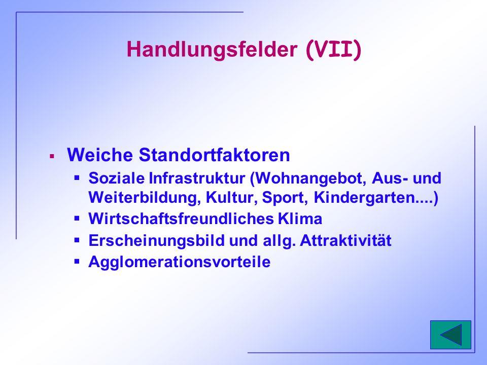 Handlungsfelder (VII) Weiche Standortfaktoren Soziale Infrastruktur (Wohnangebot, Aus- und Weiterbildung, Kultur, Sport, Kindergarten....) Wirtschafts