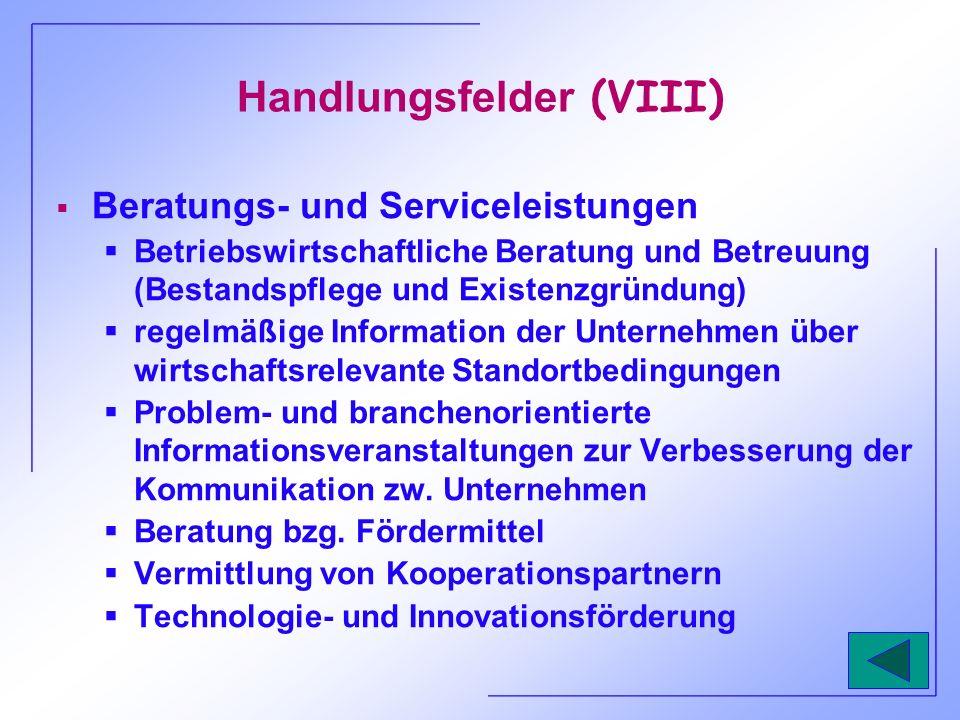Handlungsfelder (VIII) Beratungs- und Serviceleistungen Betriebswirtschaftliche Beratung und Betreuung (Bestandspflege und Existenzgründung) regelmäßi