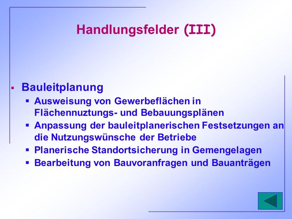 Handlungsfelder (IV) Finanzhilfen Subventionen (z.B.