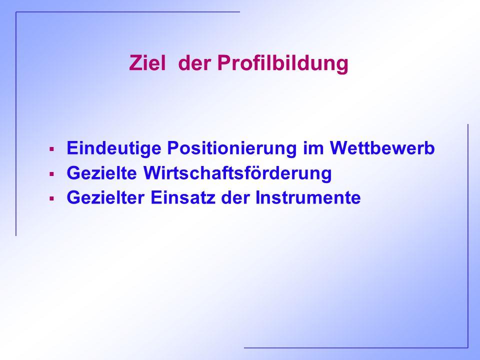 Ziel der Profilbildung Eindeutige Positionierung im Wettbewerb Gezielte Wirtschaftsförderung Gezielter Einsatz der Instrumente