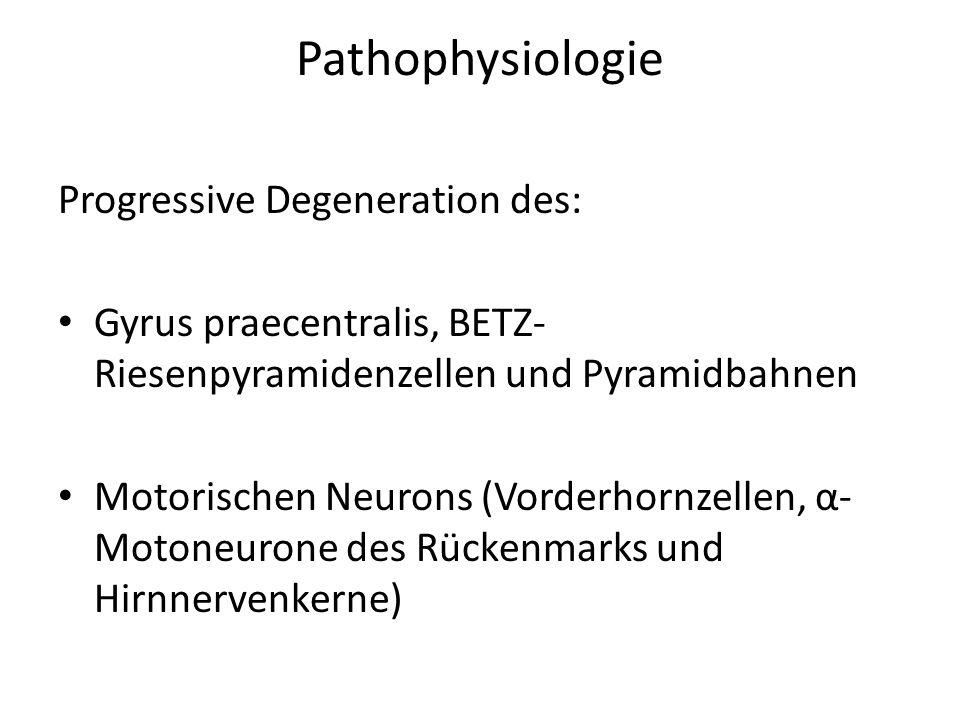 Pathophysiologie Progressive Degeneration des: Gyrus praecentralis, BETZ- Riesenpyramidenzellen und Pyramidbahnen Motorischen Neurons (Vorderhornzellen, α- Motoneurone des Rückenmarks und Hirnnervenkerne)