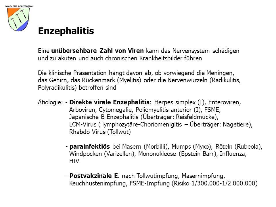 Enzephalitis Eine unübersehbare Zahl von Viren kann das Nervensystem schädigen und zu akuten und auch chronischen Krankheitsbilder führen Die klinisch