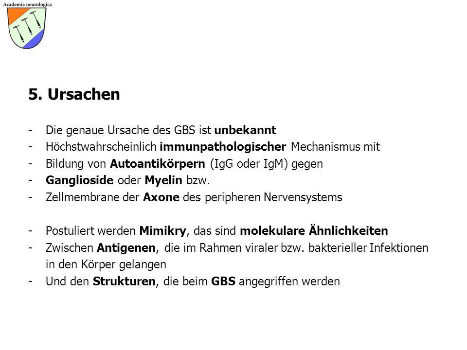 5. Ursachen - Die genaue Ursache des GBS ist unbekannt - Höchstwahrscheinlich immunpathologischer Mechanismus mit - Bildung von Autoantikörpern (IgG o