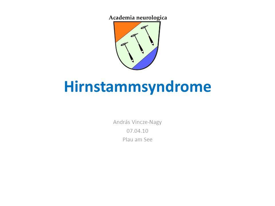 Hirnstammsyndrome András Vincze-Nagy 07.04.10 Plau am See