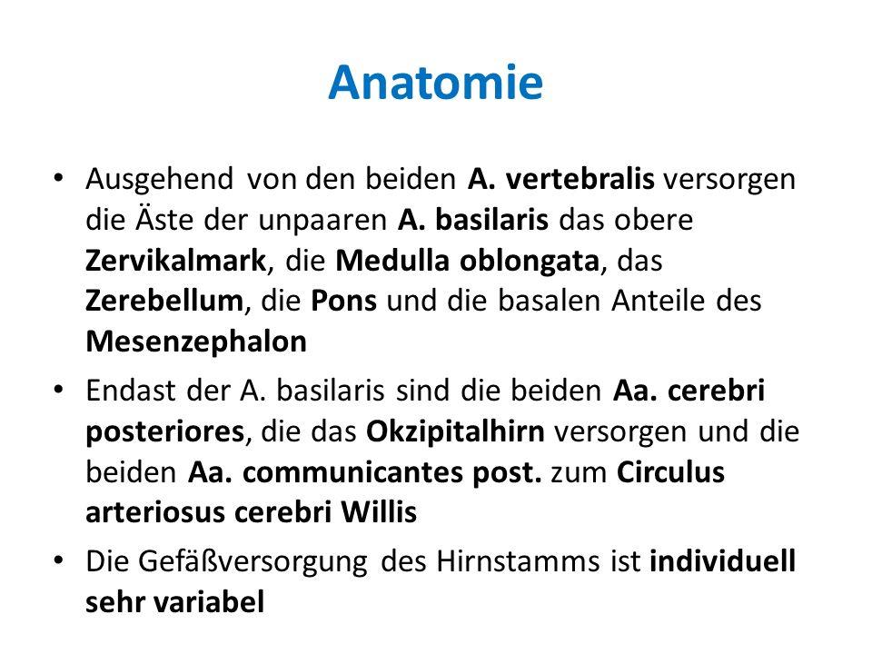 Anatomie Ausgehend von den beiden A. vertebralis versorgen die Äste der unpaaren A. basilaris das obere Zervikalmark, die Medulla oblongata, das Zereb