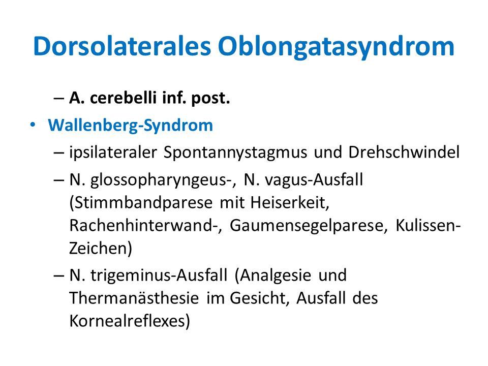 Dorsolaterales Oblongatasyndrom – A. cerebelli inf. post. Wallenberg-Syndrom – ipsilateraler Spontannystagmus und Drehschwindel – N. glossopharyngeus-