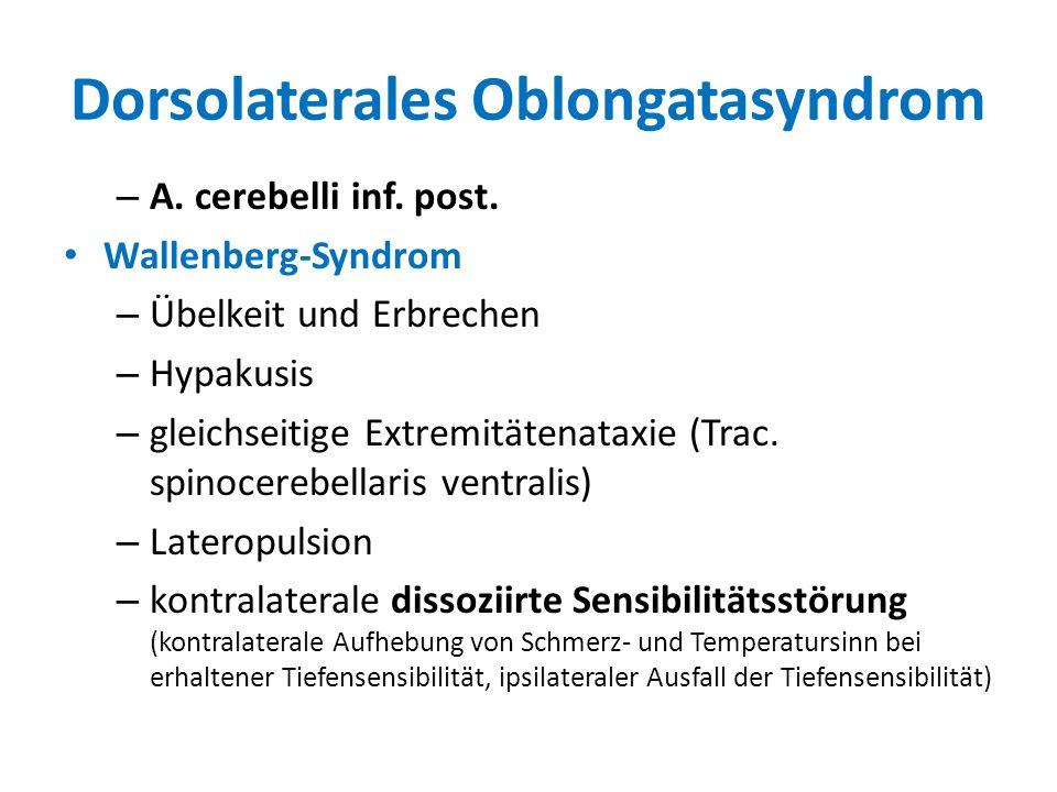 Dorsolaterales Oblongatasyndrom – A. cerebelli inf. post. Wallenberg-Syndrom – Übelkeit und Erbrechen – Hypakusis – gleichseitige Extremitätenataxie (