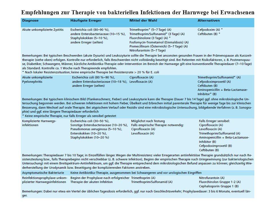 Empfehlungen zur Therapie von bakteriellen Infektionen der Harnwege bei Erwachsenen
