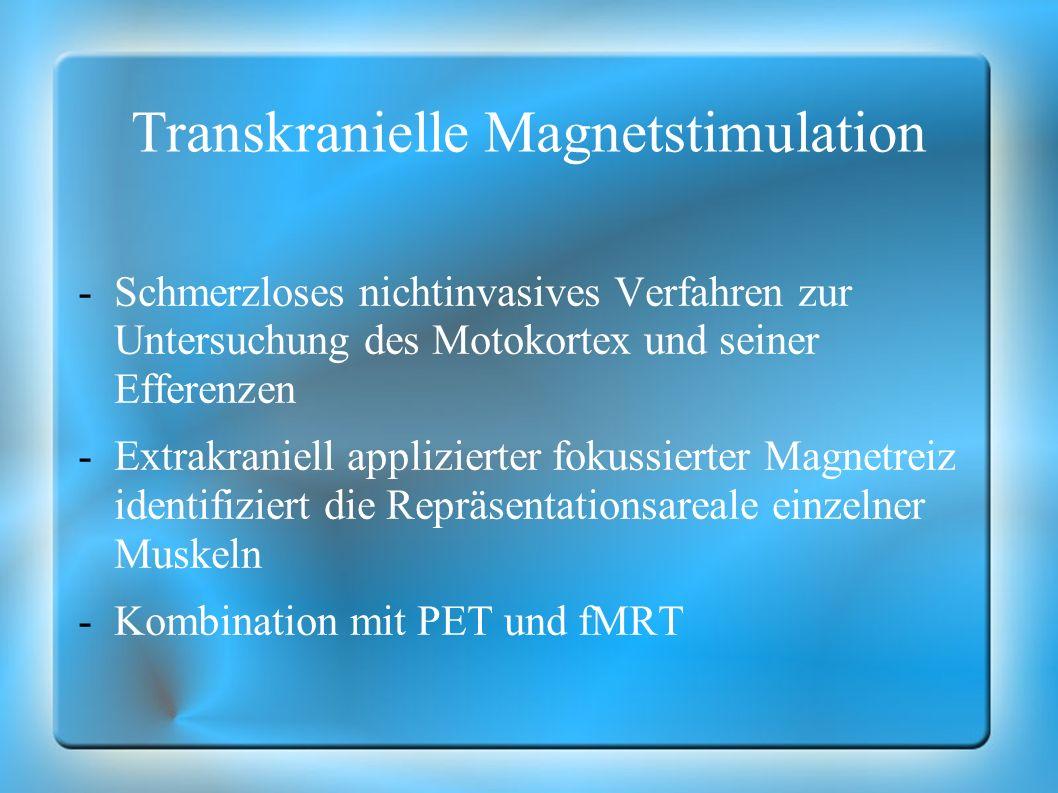 Transkranielle Magnetstimulation -Schmerzloses nichtinvasives Verfahren zur Untersuchung des Motokortex und seiner Efferenzen -Extrakraniell applizier