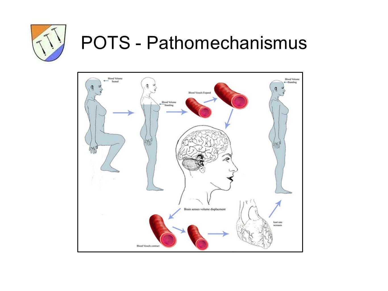 POTS – Symptome Sympathicotonuserhöhung führt zu: - Benommenheit - Visusstörungen oder Tunnelblick - Palpitationen - Nervosität und Schwächegefühl - Hyperventilation - Angst - Tremor - Brustschmerz - Übelkeit - akrale Schmerzen und Kälte - vermehrtes Schwitzen - erhöhte Migräneneigung