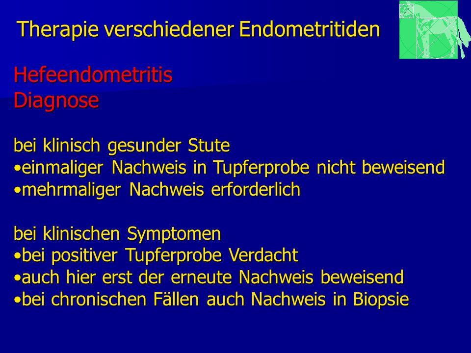 Therapie verschiedener Endometritiden HefeendometritisDiagnose bei klinisch gesunder Stute einmaliger Nachweis in Tupferprobe nicht beweisendeinmalige
