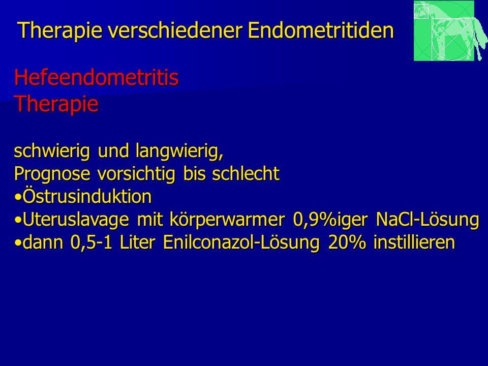 Therapie verschiedener Endometritiden HefeendometritisTherapie schwierig und langwierig, Prognose vorsichtig bis schlecht ÖstrusinduktionÖstrusindukti