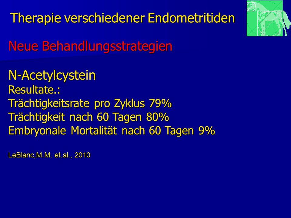 Therapie verschiedener Endometritiden Neue Behandlungsstrategien N-AcetylcysteinResultate.: Trächtigkeitsrate pro Zyklus 79% Trächtigkeit nach 60 Tage