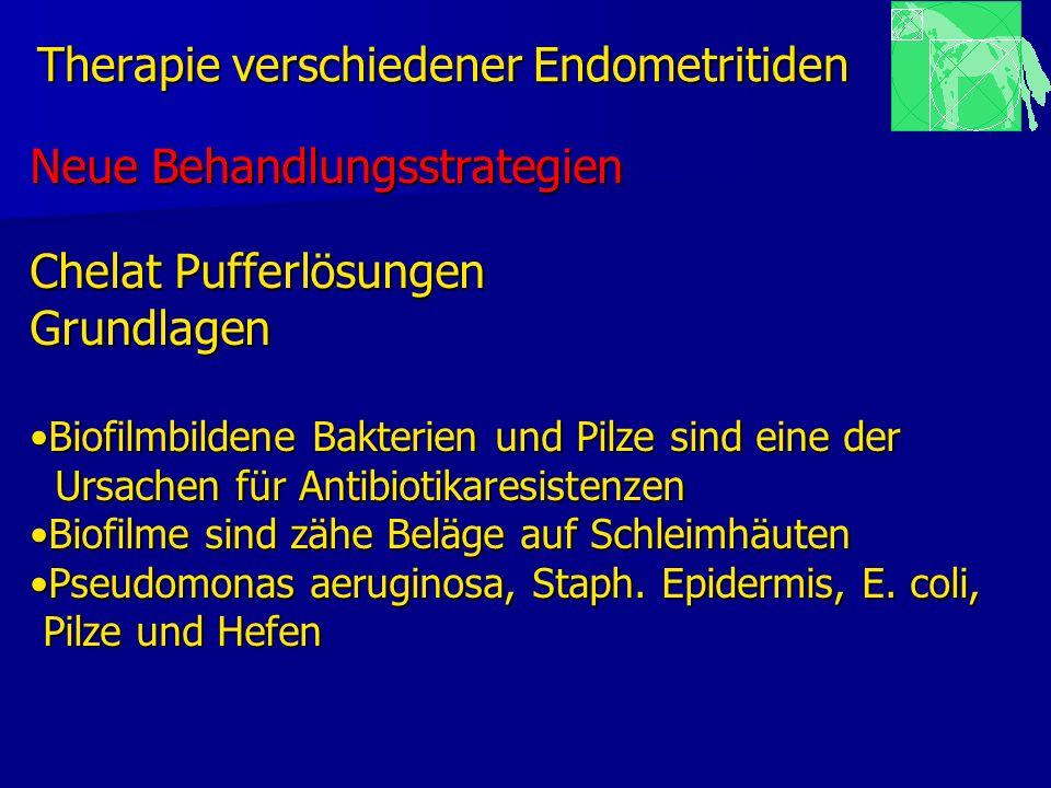 Therapie verschiedener Endometritiden Neue Behandlungsstrategien Chelat Pufferlösungen Grundlagen Biofilmbildene Bakterien und Pilze sind eine derBiof