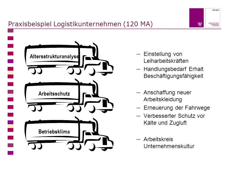 Praxisbeispiel Logistikunternehmen (120 MA) – Einstellung von Leiharbeitskräften – Handlungsbedarf Erhalt Beschäftigungsfähigkeit – Anschaffung neuer