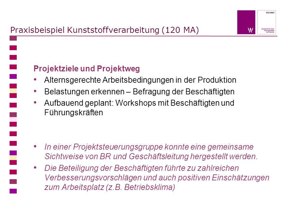 Praxisbeispiel Kunststoffverarbeitung (120 MA) Projektziele und Projektweg Alternsgerechte Arbeitsbedingungen in der Produktion Belastungen erkennen –