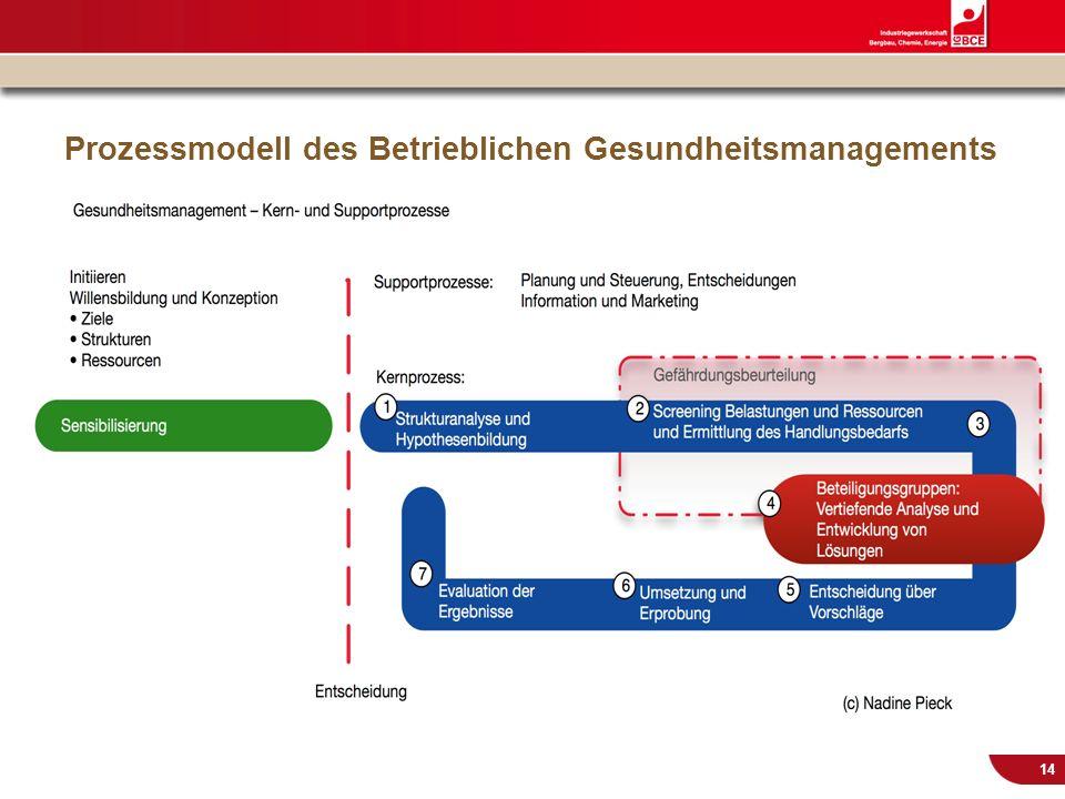 © IG BCE, Abt. Sozialpolitik, 20110817 BGM in KMU – Gesundh.konf. Kassel Nov 2011 14 Prozessmodell des Betrieblichen Gesundheitsmanagements