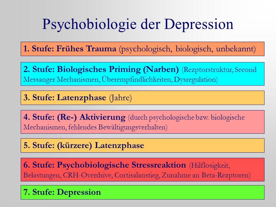 Psychobiologie der Depression 1. Stufe: Frühes Trauma (psychologisch, biologisch, unbekannt) 2. Stufe: Biologisches Priming (Narben) (Rezptorstruktur,