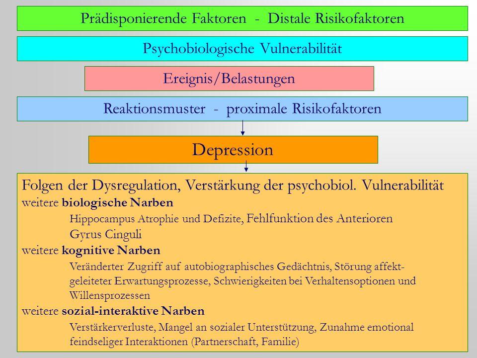 Prädisponierende Faktoren - Distale Risikofaktoren Psychobiologische Vulnerabilität Ereignis/Belastungen Reaktionsmuster - proximale Risikofaktoren De