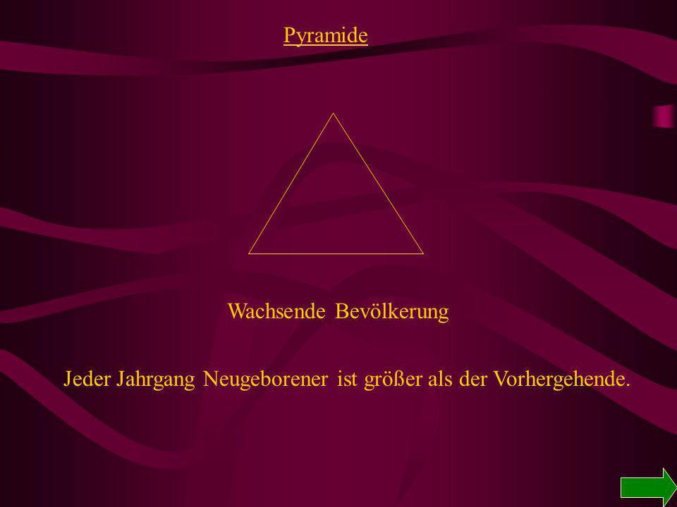Bevölkerungsaufbau PyramideGlockeUrne