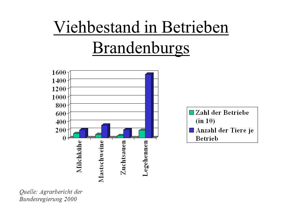 Brandenburg Gesamtfläche: 29 476 Quadratkilometer In Brandenburg bewirkten höhere Erlöse bei Ölsaaten und Zuckerrüben sowie höhere Einnahmen aus Preis