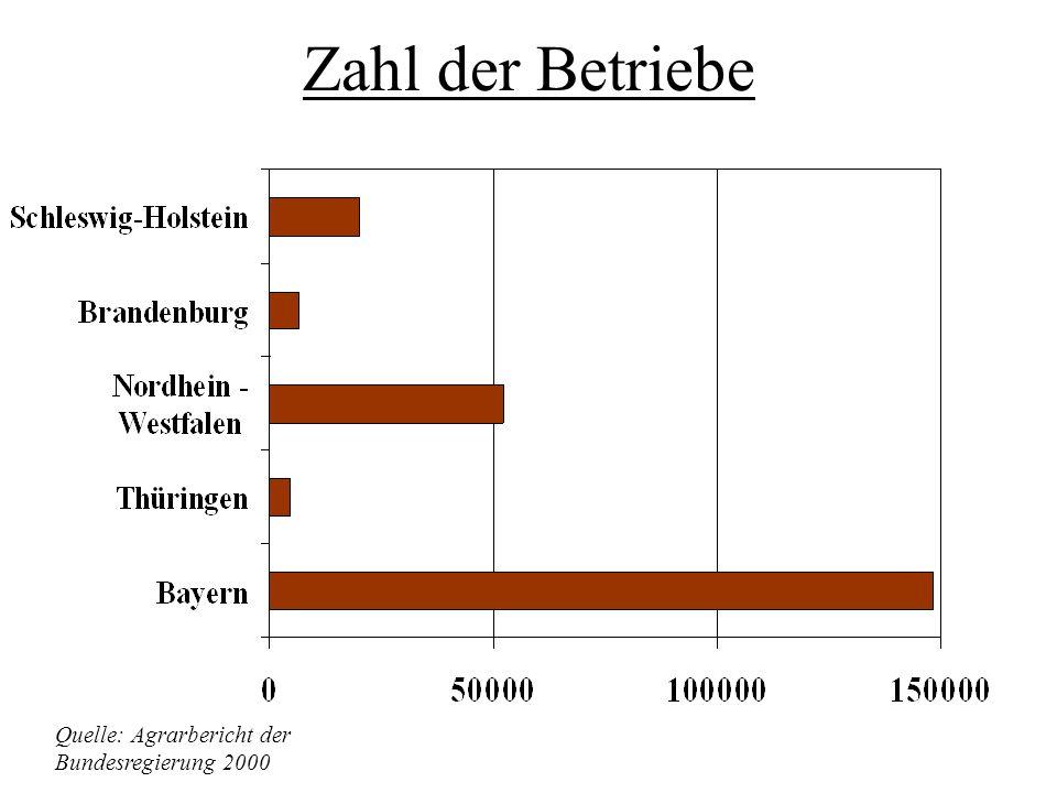 Viehbestand in Betrieben Brandenburgs Quelle: Agrarbericht der Bundesregierung 2000