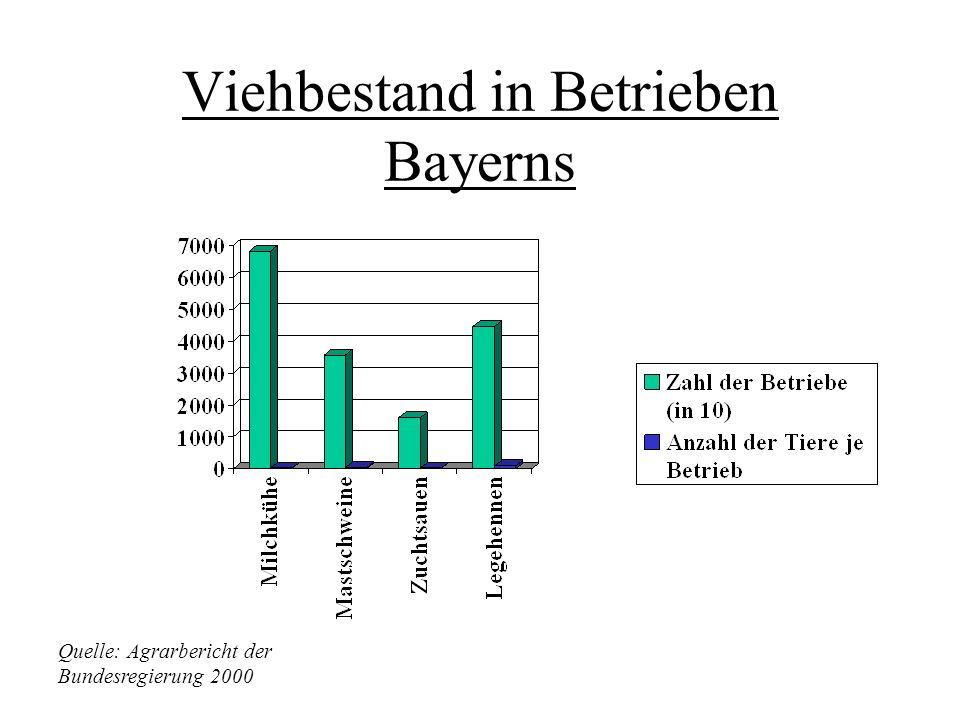Bayern Gesamtfläche: 70 547 Quadratkilometer Bayern wies mit 4,1% als einziges Land einen deutlichen Einkommenszuwachs je Betrieb auf. Ursache dafür i