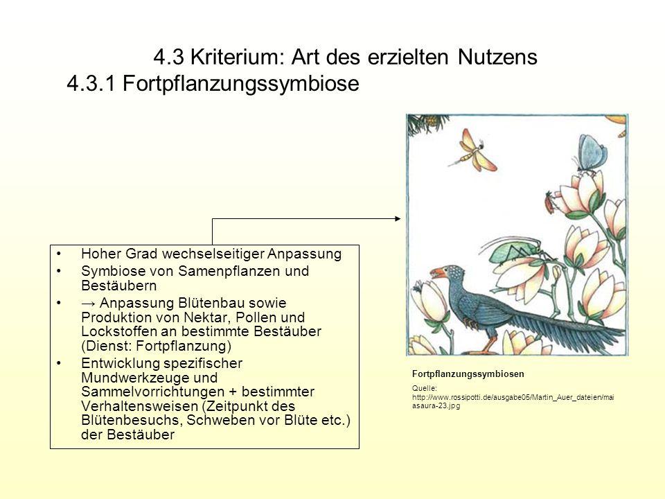 4.3 Kriterium: Art des erzielten Nutzens Hoher Grad wechselseitiger Anpassung Symbiose von Samenpflanzen und Bestäubern Anpassung Blütenbau sowie Prod